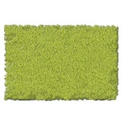 Follaje - Verde Claro